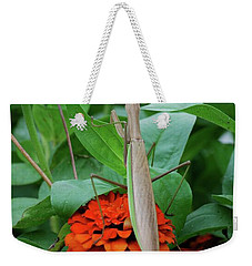 Weekender Tote Bag featuring the photograph The Patience Of A Mantis by Thomas Woolworth