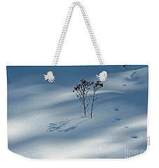 Weekender Tote Bag featuring the photograph The Shadow Of Loneliness by Ausra Huntington nee Paulauskaite