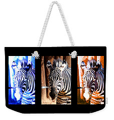 Weekender Tote Bag featuring the photograph The Three Zebras Black Borders by Rebecca Margraf