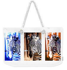 Weekender Tote Bag featuring the photograph The Three Zebras White Borders by Rebecca Margraf