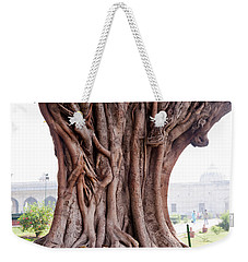 Weekender Tote Bag featuring the photograph The Twisted And Gnarled Stump And Stem Of A Large Tree Inside The Qutub Minar Compound by Ashish Agarwal