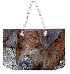 This Little Piggy Took A Nap Weekender Tote Bag