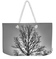 Through The Boughs Bw Weekender Tote Bag by Dan Stone