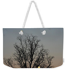 Through The Boughs Portrait Weekender Tote Bag by Dan Stone