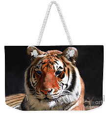 Tiger Blue Eyes Weekender Tote Bag