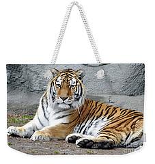 Tiger Resting Weekender Tote Bag