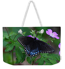 Weekender Tote Bag featuring the photograph Tiger Swallowtail Female Dark Form On Wild Geranium by Daniel Reed