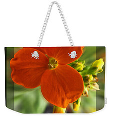 Weekender Tote Bag featuring the photograph Tiny Orange Flower by Debbie Portwood