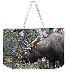 Weekender Tote Bag featuring the photograph Tired Eyes by Doug Lloyd