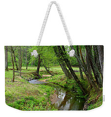 Weekender Tote Bag featuring the photograph Toms Creek In Early Spring by Kathryn Meyer
