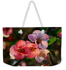 Weekender Tote Bag featuring the photograph Toyo Nishiki Quince by Kathryn Meyer