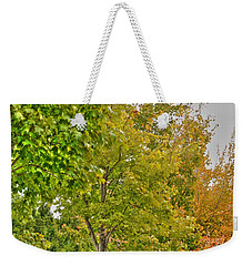 Weekender Tote Bag featuring the photograph Transition Of Autumn Color by Michael Frank Jr
