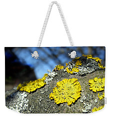 Weekender Tote Bag featuring the photograph Tree Lichen by Ausra Huntington nee Paulauskaite