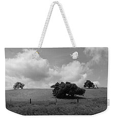 Weekender Tote Bag featuring the photograph Trees On The Hillrise by Kathleen Grace