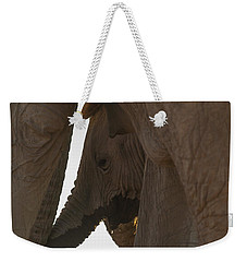 Trunk Touch Weekender Tote Bag