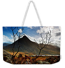 Weekender Tote Bag featuring the photograph Tryfan And Tree by Beverly Cash