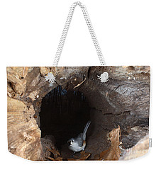 Tufted Titmouse In A Log Weekender Tote Bag