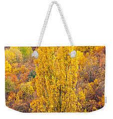 Weekender Tote Bag featuring the photograph Tuscany Landscape  by Luciano Mortula