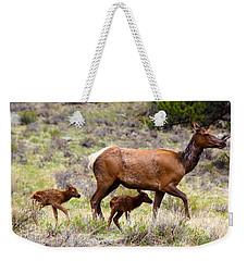 Twin Elk Calves Weekender Tote Bag