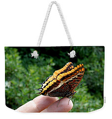 Weekender Tote Bag featuring the photograph Two Tailed Pasha by Lainie Wrightson