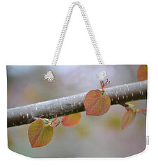 Weekender Tote Bag featuring the photograph Unfurling Buds In The Heart Of Spring by JD Grimes