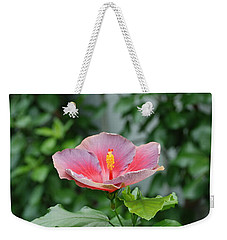 Weekender Tote Bag featuring the photograph Unusual Flower by Jennifer Ancker