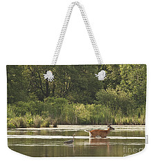 Unusual Pair  Weekender Tote Bag by Jeannette Hunt