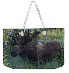 Weekender Tote Bag featuring the photograph Velvet by Doug Lloyd