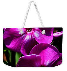 Weekender Tote Bag featuring the photograph Vibrant by Karen Harrison