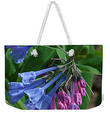 Weekender Tote Bag featuring the photograph Virginia Bluebells by Daniel Reed