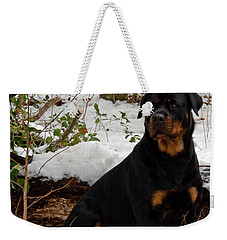 Weekender Tote Bag featuring the photograph Waiting by Karen Harrison
