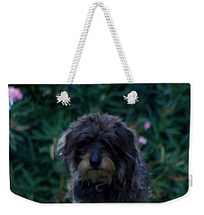 Weekender Tote Bag featuring the photograph Waiting by Lainie Wrightson
