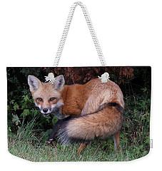 Wary Fox Weekender Tote Bag