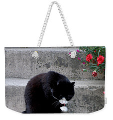 Weekender Tote Bag featuring the photograph Washing Up by Lainie Wrightson