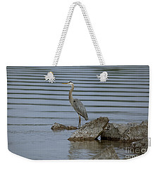 Watchful Weekender Tote Bag by Eunice Gibb