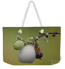 Webbed Berry Weekender Tote Bag by Eunice Gibb