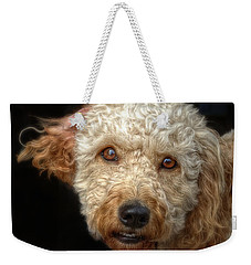 Webster At The Bar Weekender Tote Bag