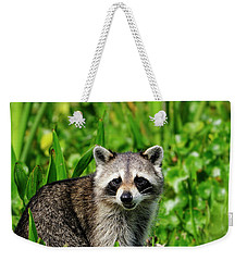 Wetlands Racoon Bandit Weekender Tote Bag