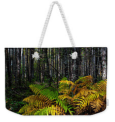 Where The Ferns Grow Weekender Tote Bag