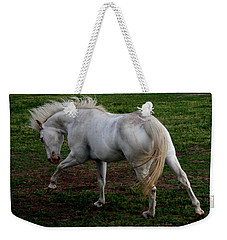 Weekender Tote Bag featuring the photograph White Cloud by Karen Harrison