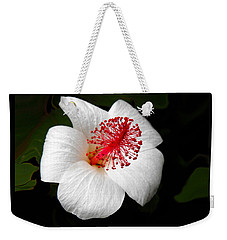 Weekender Tote Bag featuring the photograph White Hibiscus Flower by Rebecca Margraf