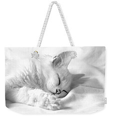 Weekender Tote Bag featuring the photograph White Kitten On White. by Raffaella Lunelli