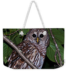 Who Are You 2 Weekender Tote Bag by Cheryl Baxter