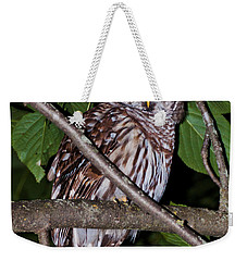 Who Are You Weekender Tote Bag by Cheryl Baxter