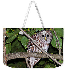 Who Are You Looking At Weekender Tote Bag by Cheryl Baxter
