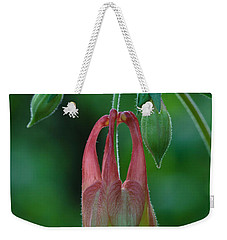 Weekender Tote Bag featuring the photograph Wild Columbine Flower by Daniel Reed