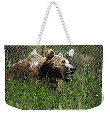 Wild Life Safari Bear Weekender Tote Bag