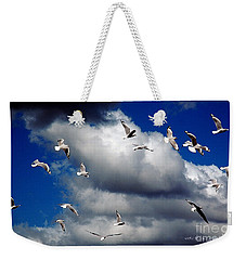 Weekender Tote Bag featuring the photograph Wind Sailing Seagulls by Vicki Ferrari