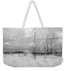 Weekender Tote Bag featuring the photograph Winter Bare by Kathleen Grace