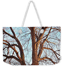 Winter Light Weekender Tote Bag by Chalet Roome-Rigdon